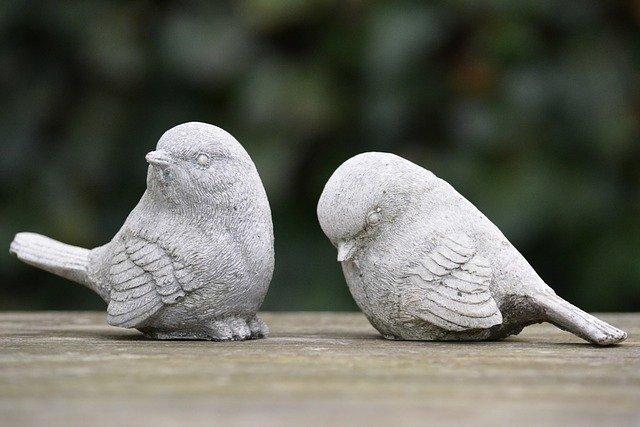 喧嘩している小鳥